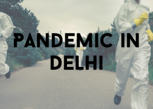 Thumbnail for the post titled: Delhi NCT